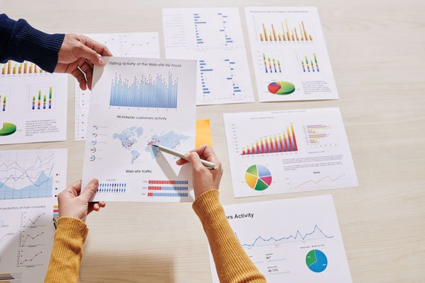 Small Business Website Design Charts and Graphs